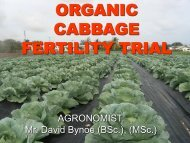 organic manures with cabbage
