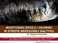 monitoring.pdf - Państwowy Instytut Geologiczny