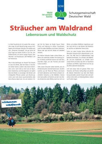 Heckenrose - Schutzgemeinschaft Deutscher Wald