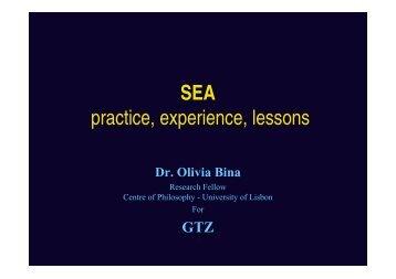 SEA - Strategic Environmental Assessment
