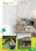 La volaille des fermes suisses - Nomad Systems - Page 3