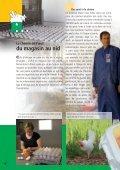 La volaille des fermes suisses - Nomad Systems - Page 6
