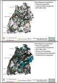 Nutzung von Geodaten durch die Rohstoff gewinnende ... - LAGA - Page 6