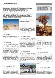 Atemberaubendes Namibia - Seniorenreisen Senioren Reise