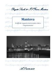 mantova e inquinamento - Scuola21 - Fermi