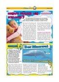 Februar 2012 - Seesener Beobachter - Page 6