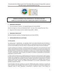 términos de referencia generales - Organismo Andino de Salud