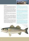 Développement durable de l'aquaculture méditerranéenne ... - Page 2