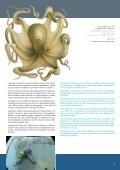Développement durable de l'aquaculture méditerranéenne ... - Page 7