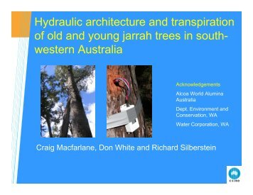 Hydraulic architecture and transpiration of old-growth Eucalyptus ...