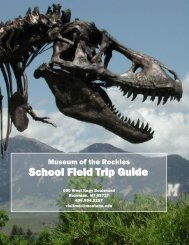 Field Trip Guide - Museum of the Rockies