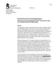 Handlingsprogram mot alkohol och droger (pdf) - Sundsvall