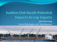 Sudden Oak Death potential impacts to log exports