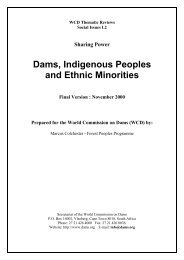 Thematic Review II.2: Dams, Indigenous Peoples and Ethnic Minorities