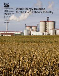 2008 Energy Balance for the Corn-Ethanol Industry - US Department ...