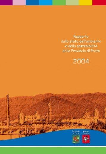 Rapporto sullo Stato dell'Ambiente e della Sostenibilità - 2004