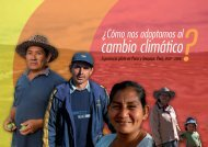 Fases de intervención - Riesgo y Cambio Climático