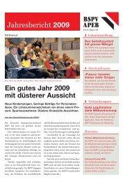 Jahresbericht 2009 (pdf) - BSPV