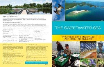The Sweetwater Sea: Summary - Michigan Sea Grant