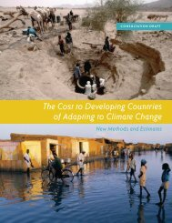 The Cost to Developing Countries of Adapting to Climate Change