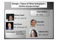 Groupe « Tissus et Fibres biologiques »