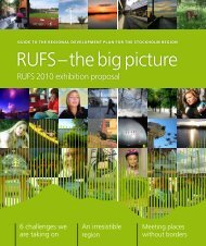 RUFS – the big picture