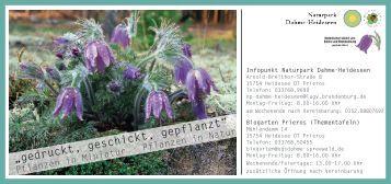 Flyer zur Ausstellung - Botanischer Verein von Berlin und ...