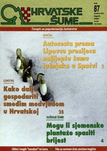 """Oblaci i magla """"nasukani"""" - Hrvatske šume"""