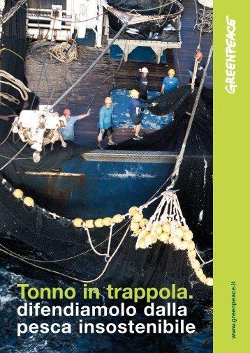 """Il rapporto """"Tonno in trappola"""" - Greenpeace Italia"""