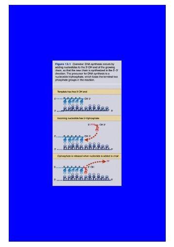 Microsoft PowerPoint - Replikacja2.ppt [Tylko do odczytu]
