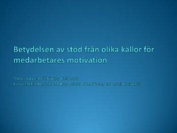 Betydelsen av stöd från olika källor för medarbetares motivation