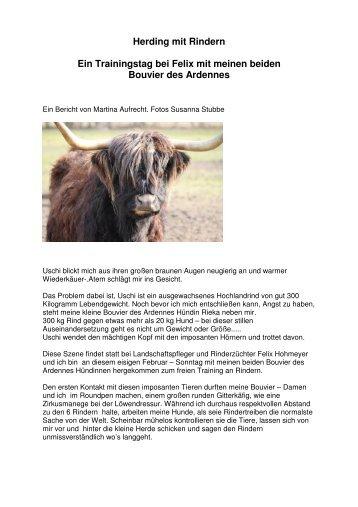 Rinderhüten neu - Bouvier des Ardennes