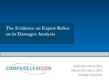 The Evidence an Expert Relies on in Damages Analysis