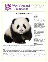 PANDA FACT SHEET - World Animal Foundation