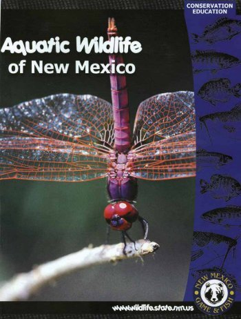 Aquatic Wildlife Coloring Book [PDF] - New Mexico Game and Fish