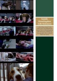 Inside Huntingdon Life Sciences : 2005 - SHAC >> Stop Huntingdon ...