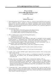 pravidlá na rok 2013