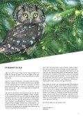 NATURENS UNIVERSITET - Danmarks Naturfredningsforening - Page 3
