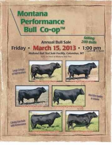 Annual Bull Sale - Ballyhoo Printing