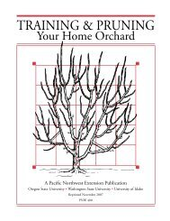 Training and Pruning Your Home Orchard, PNW 400 (Oregon State ...