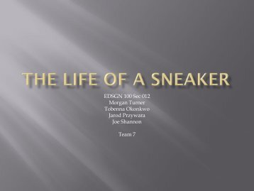 Life Cycle of a Sneaker