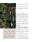 Worum es bei der Permakulturgeht - Permakultur Koller - Seite 3