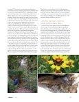 Worum es bei der Permakulturgeht - Permakultur Koller - Seite 6