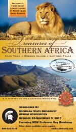 Treasures of Southern Africa - MSU Alumni Association - Michigan ...