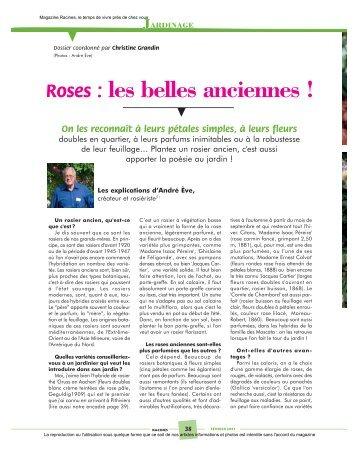 Roses - Magazine Racines