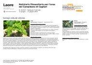 CAMPIDANO DI CAGLIARI - del 11 giugno 2013 [file .pdf]