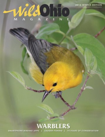 WARBLERS - Ohio Department of Natural Resources