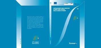 L'attuazione nelle Regioni e negli enti locali della legge 69 ... - Formez