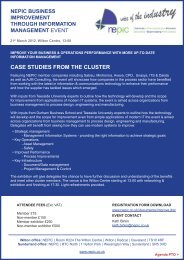 CASE STUDIES FROM THE CLUSTER - NEPIC