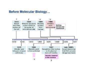 3 - Biologia Molecular e Genética